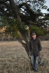 mic myers tree