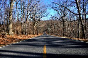 road_0333